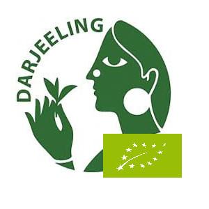Thé Darjeeling de printemps